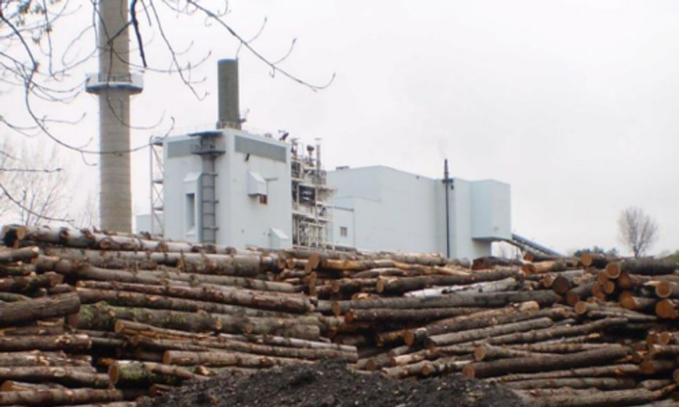 Groups Expose UK for Subsidizing Biomass and 'Clean Coal' as Renewable Energy