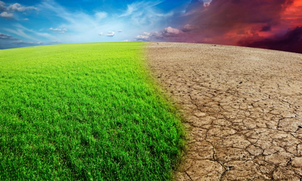 5 Ways to Mobilize Private Investment to Tackle Climate Change