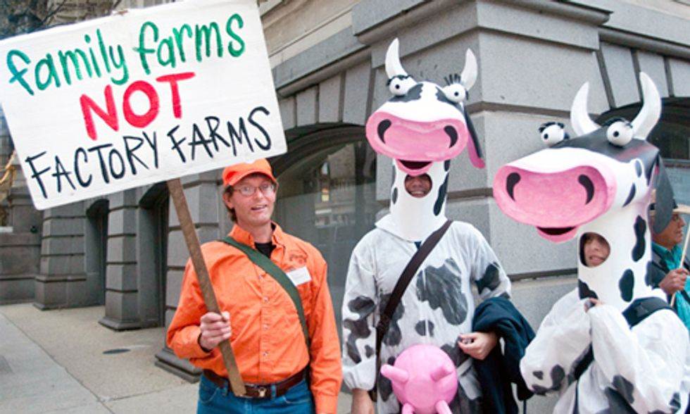 6 Crimes Against Nature Perpetrated by the Food Industry