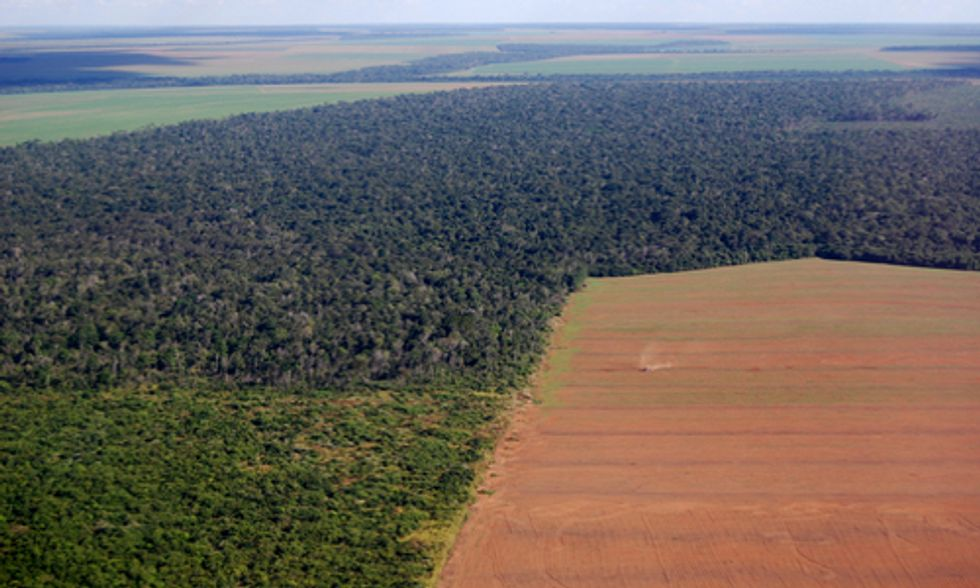 Amazon Deforestation Threatens South America's Water Security