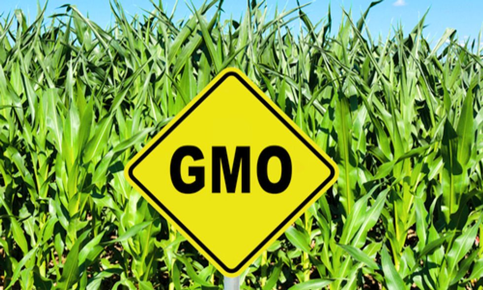 Groups Challenge USDA's Proposed Deregulation of GE Corn and Soybeans