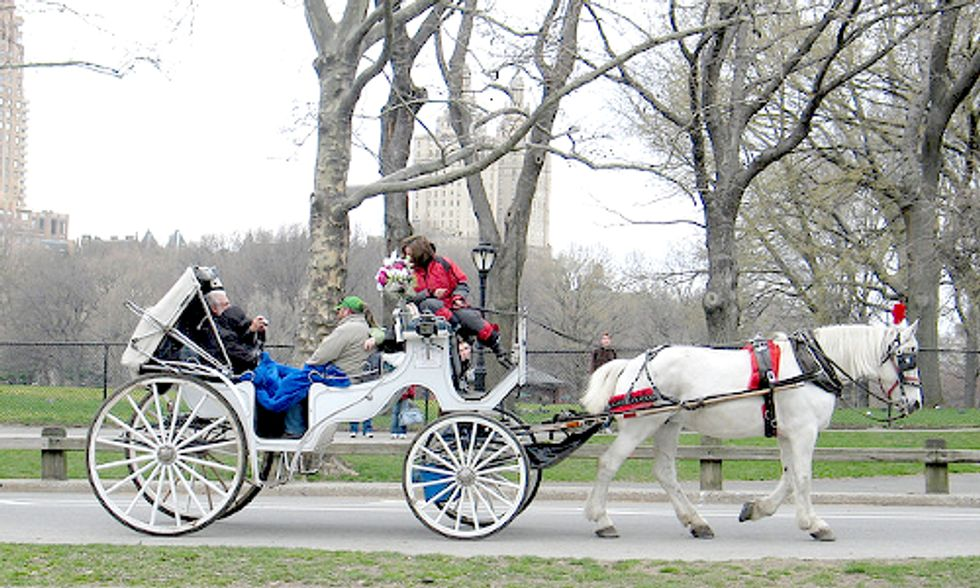 EVs vs. Horse-Drawn Carriages in New York's Central Park