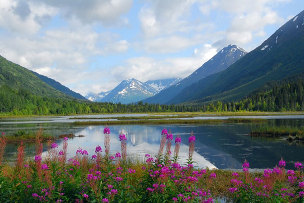 First-Ever Drill Site Approved Inside Alaskan Reserve Challenged