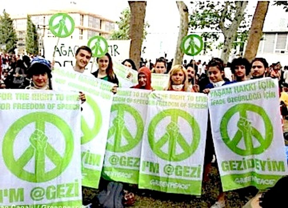 Gezi Park: A Battle to Preserve Nature and Democracy