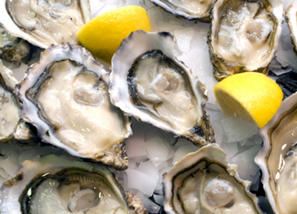 Climate Change Threatens Billion-Dollar Oyster Business