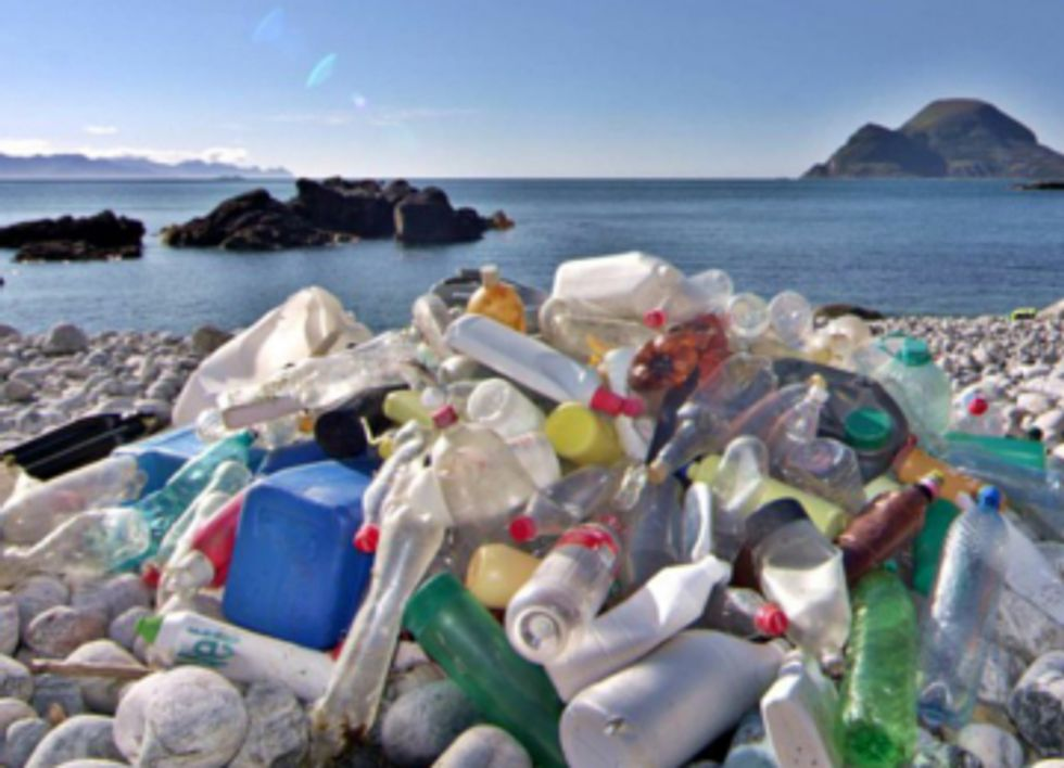 Summer Beachgoers, Ditch Bottled Water to Protect Shores from Plastic Pollution