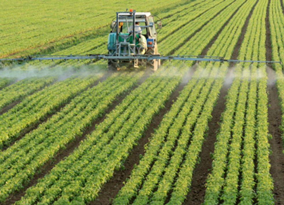 Genetically Engineered Crops Trigger Cycle of Superweeds and Toxic Pesticides