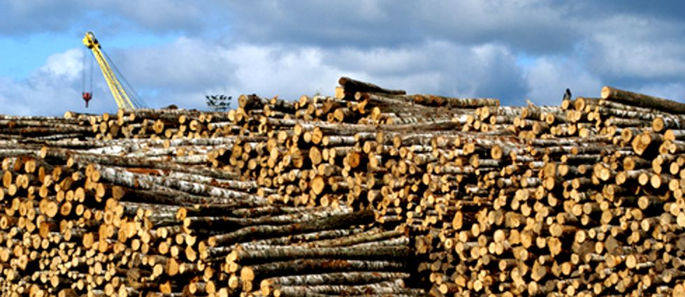 Carbon Offsets Could Create Loophole for Industry to Pollute as Usual