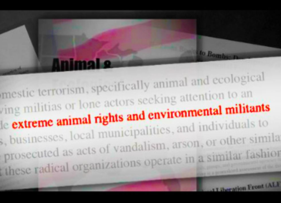 ALEC's Ag-Gag Laws Threaten Factory Farm Whistleblowers with Criminal Charges
