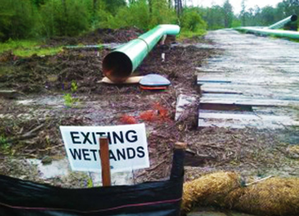 New Pipeline Threatens Wetlands in Gulf Coast Communities