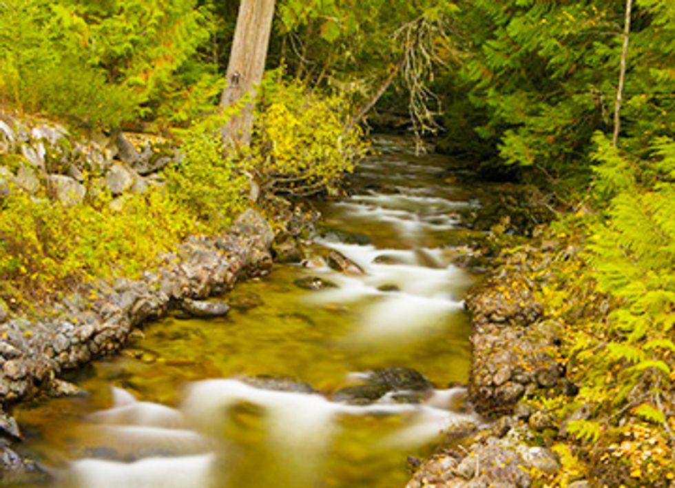 EPA Reversal Protects Pristine Yellowstone Waters