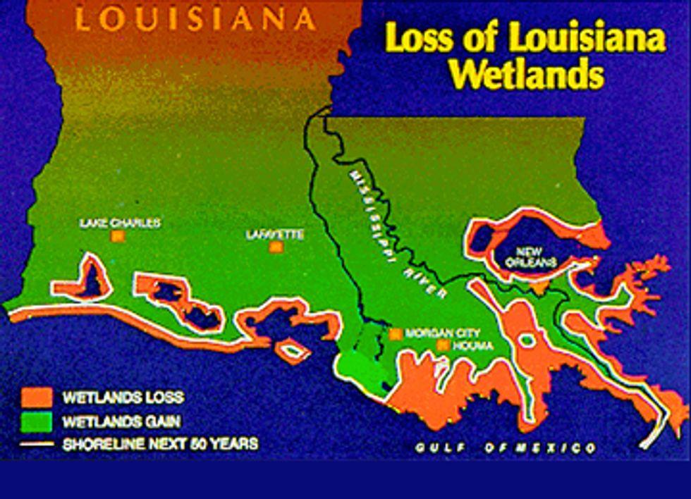 Louisiana Sues Big Oil for Loss of Coastal Wetlands