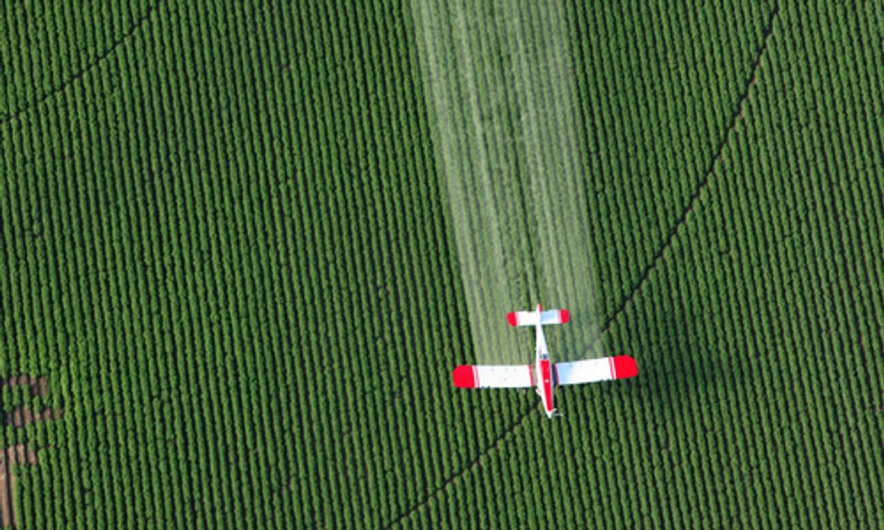 Brazil Seeks Ban on Monsanto Herbicide Due to Alarming Toxicity Risks