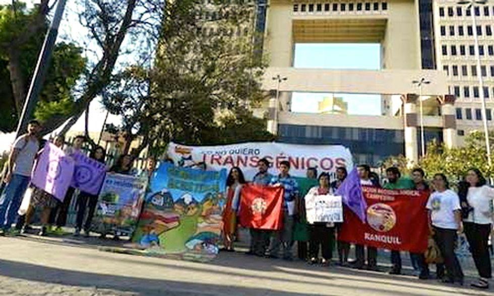 Chile Derails 'Monsanto Law' That Would Privatize Seeds