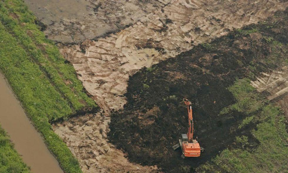 Eco Euphemisms That Confuse Our Understanding of Environmental Destruction