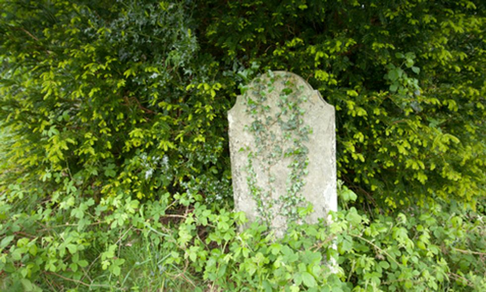 Dying to Give Back: The Green Burial Movement