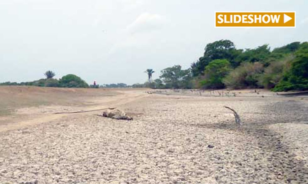 Extreme Drought Causes Environmental Crisis in Colombia