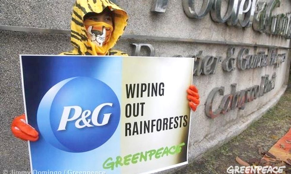P&G to Eliminate Deforestation From Palm Oil Products