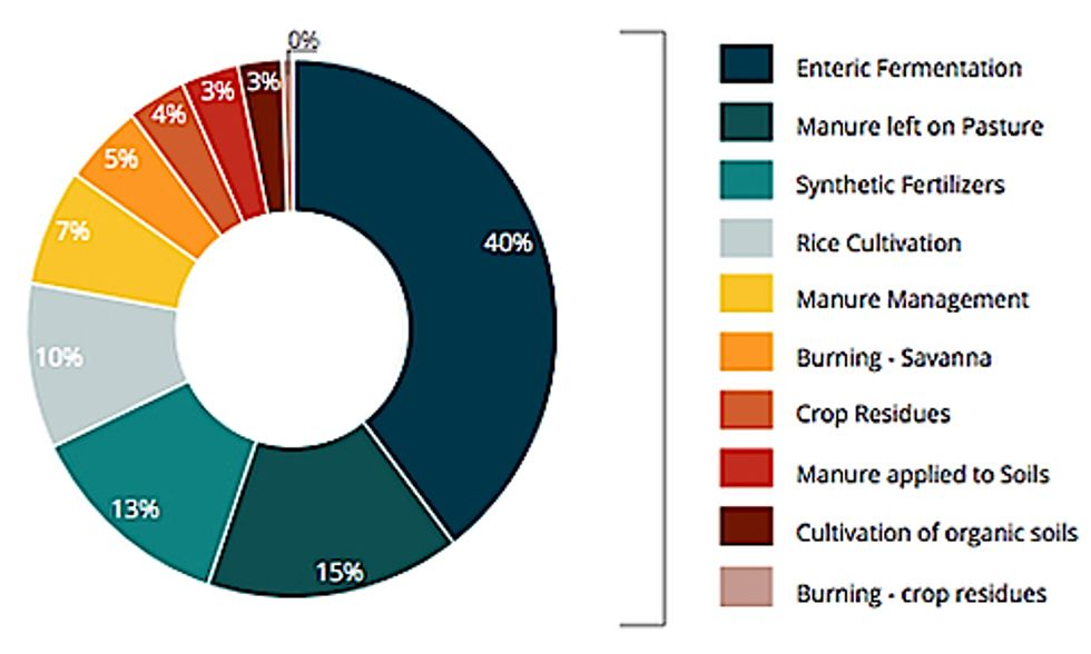 UN Predicts 30% Rise in Agriculture's Greenhouse Gas Emissions by 2050