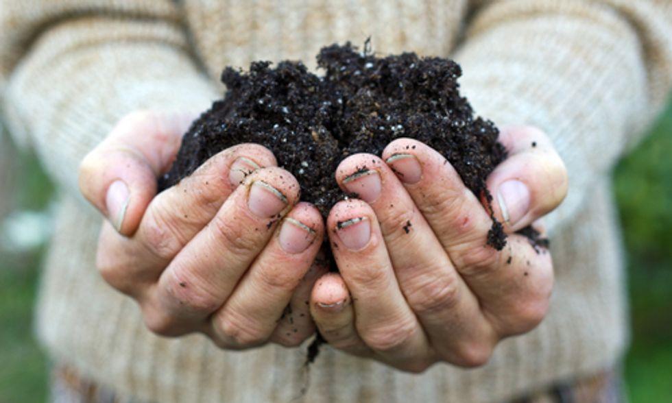 Springtime Garden Soil Prep