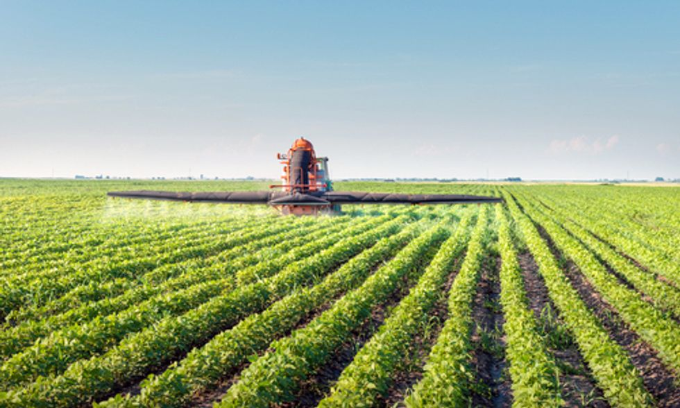 'Extreme Levels' of Monsanto's Roundup Herbicide Found in Soy Plants