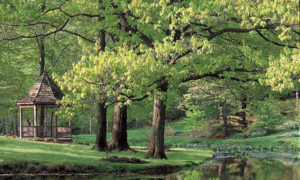 Join in Arbor Day Festivities With Holden Arboretum