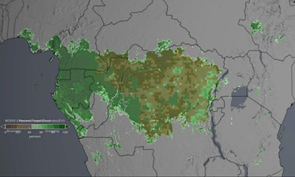 NASA Satellite Images Show Climate Change Accelerates 'Browning' of Congo Rainforest