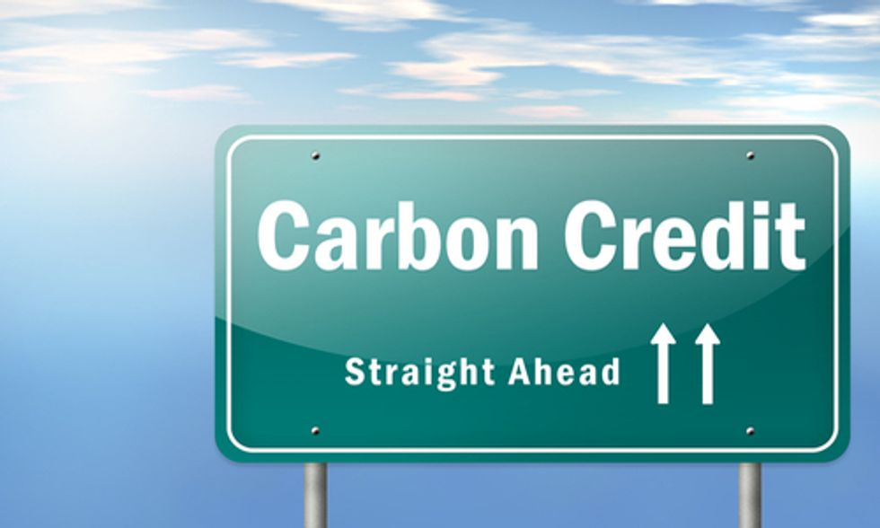 30+ Countries Criticize California's Carbon Offsets Program
