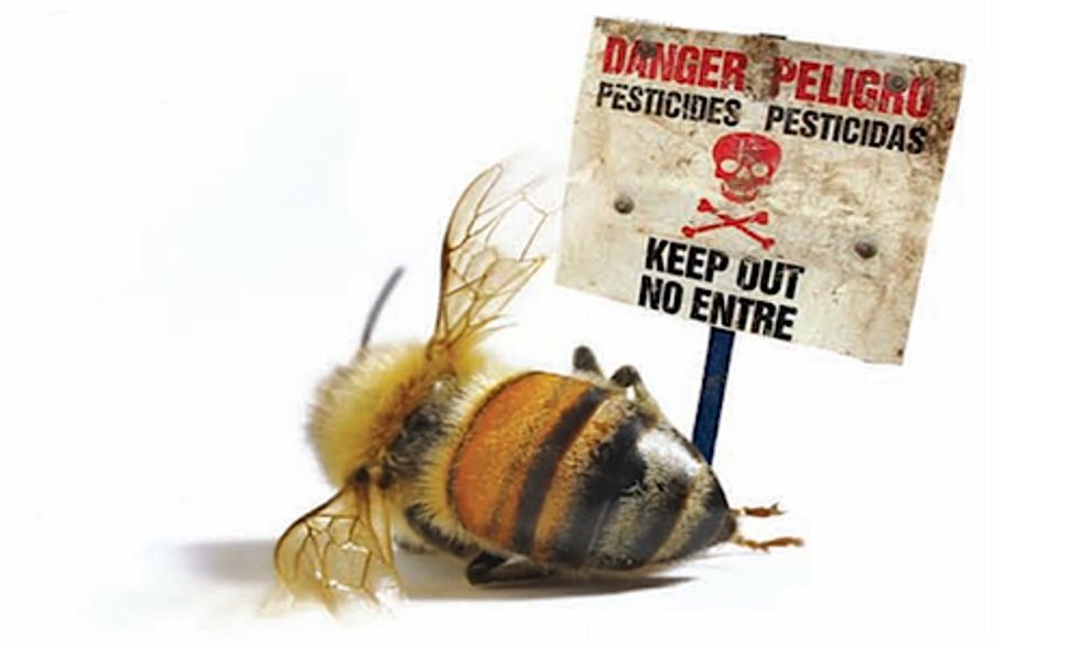 7 PR Tricks Pesticide Companies Use to Spin Bee Crisis