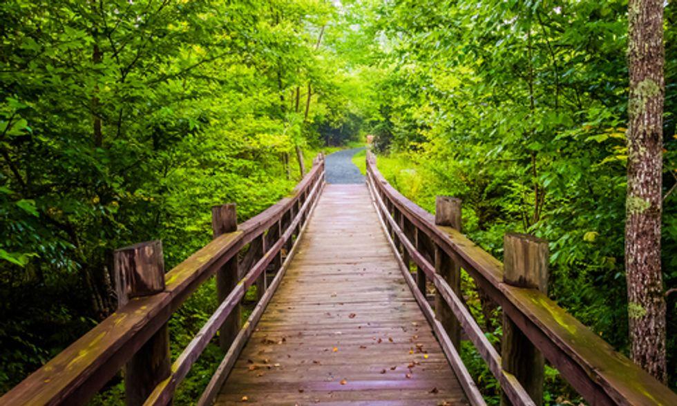 Doctors Prescribe Spending Time In Parks