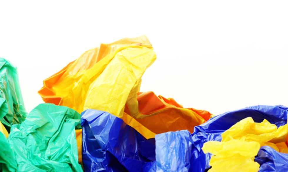 The Global Downfall of the Plastic Bag