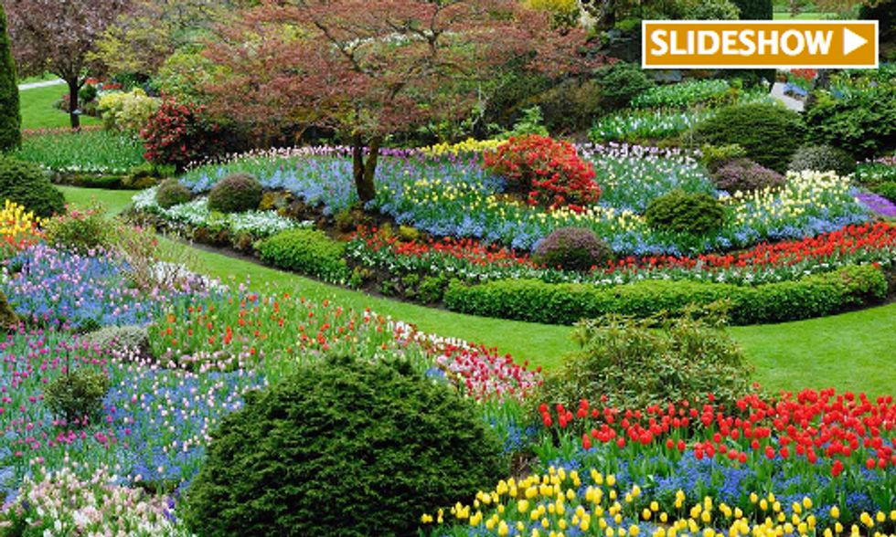7 Awesome Gardens From Around the World