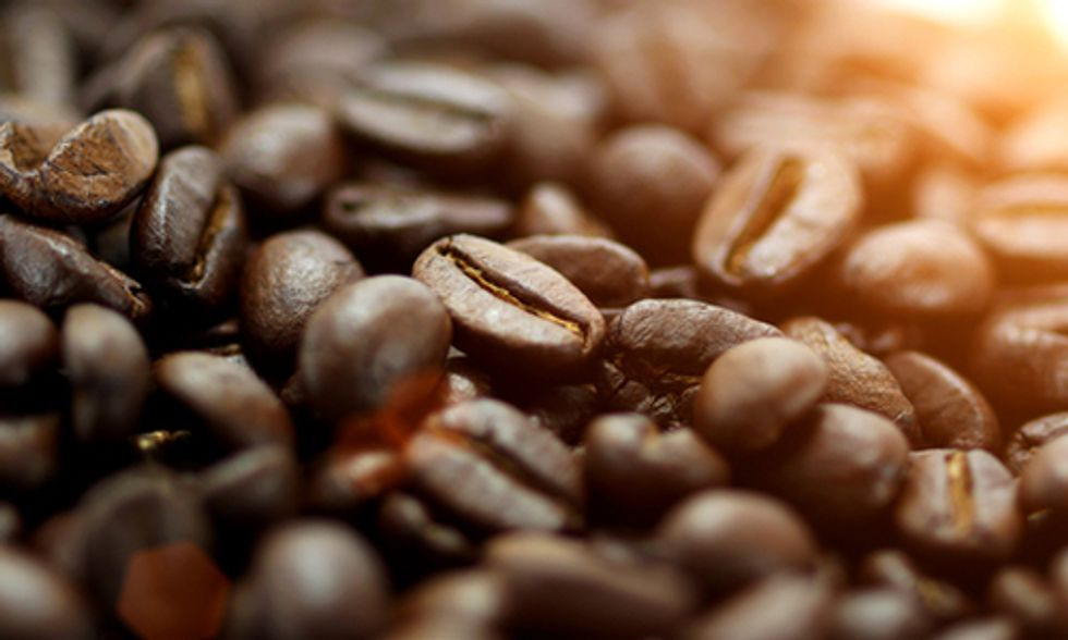 Why Shade Grown Coffee Is Better