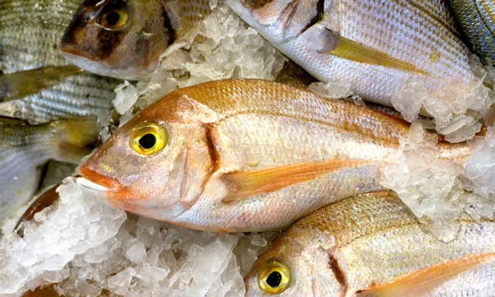 Will California Tackle Seafood Fraud Through Labeling Legislation?