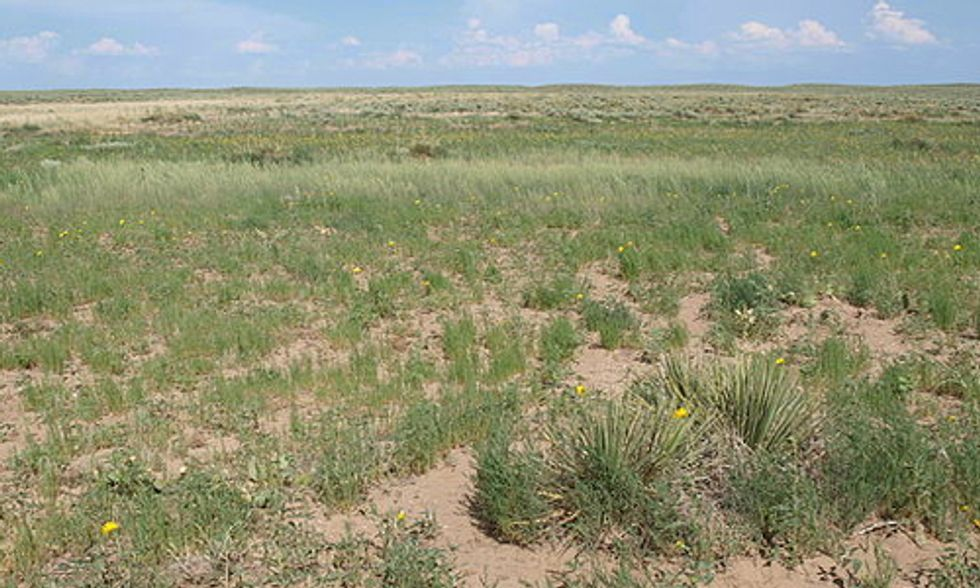 Geographers Identify Huge Sources of CO2 Buried in Soil of the Great Plains