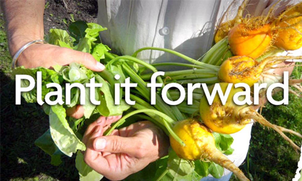 Plant it Forward: Apply Today for a $15,000 Gardens for Good Grant