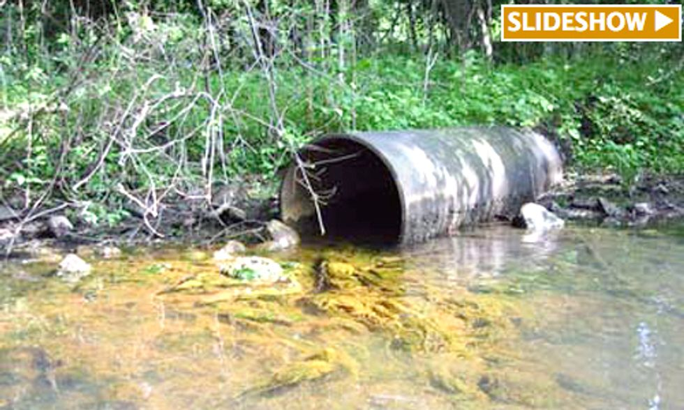 Report Exposes Companies That Dumped 206 Million Pounds of Toxic Chemicals Into U.S. Waterways