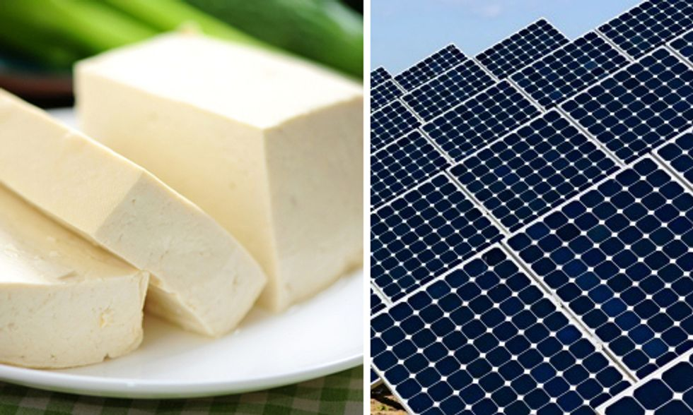 Tofu Ingredient Offers a Taste of Cheaper, Safer Solar Energy