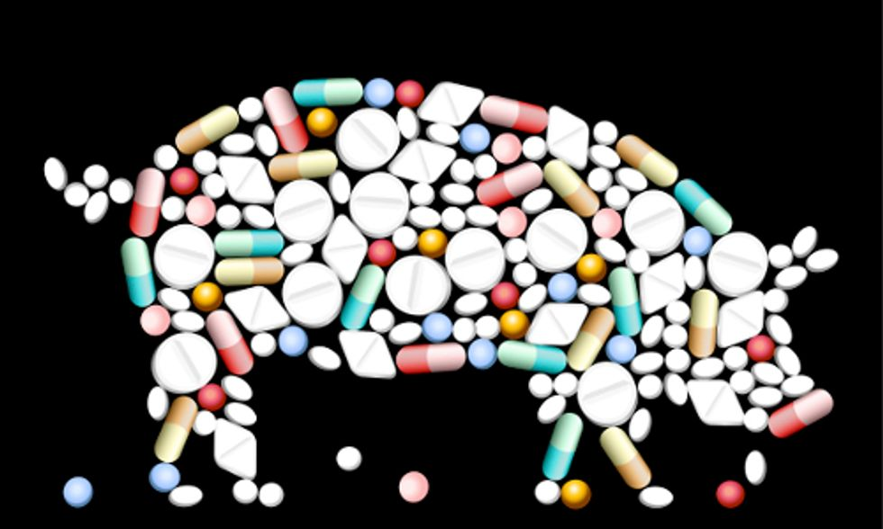 Court Rules Rampant Misuse of Antibiotics on Factory Farms Can Continue