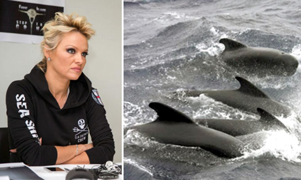 Pamela Anderson Shines Spotlight on Brutal and Archaic Mass Slaughter of Pilot Whales