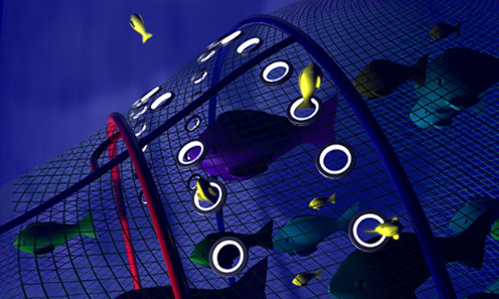 Bye Bye Bycatch? Smart Nets That Save Fish