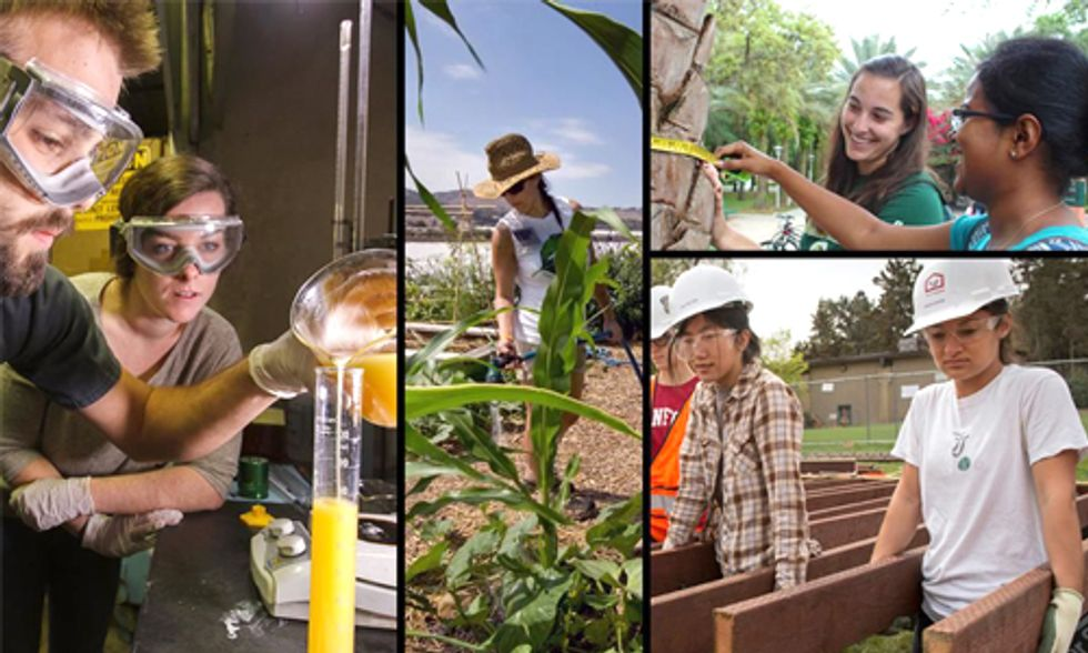 America's Top 10 'Coolest Schools' in Sustainability