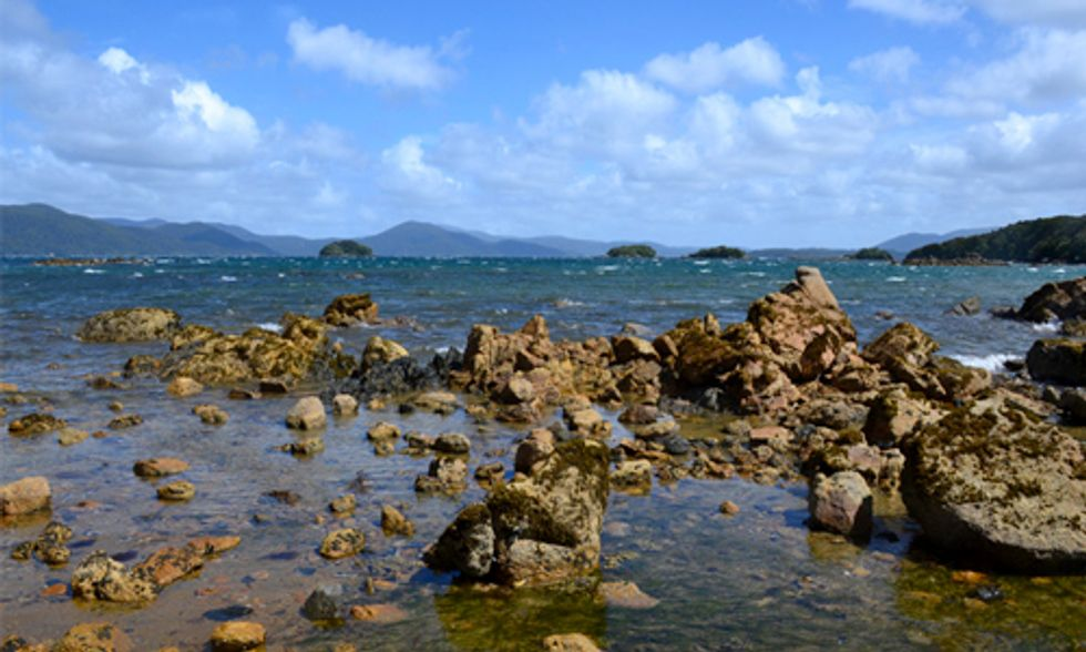 Ocean Acidification Threatens Economies and Cultures Around the World
