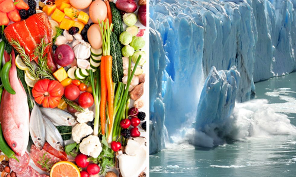 How Diet and Climate Change Are Intrinsically Linked