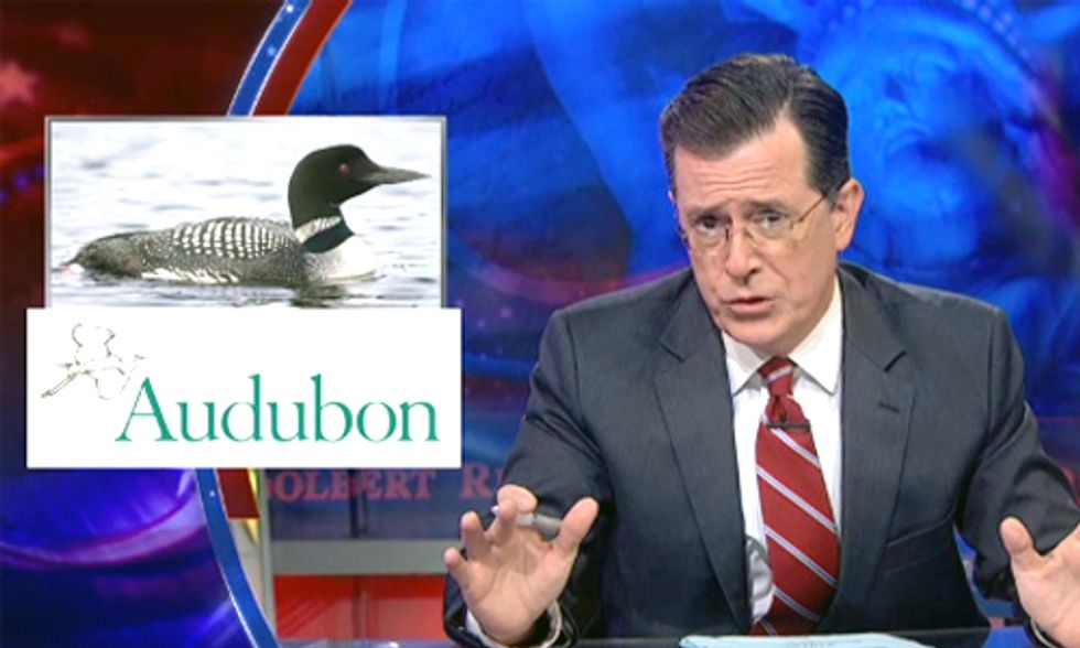 Stephen Colbert: U.S. Needs New National Bird in Face of Climate Change