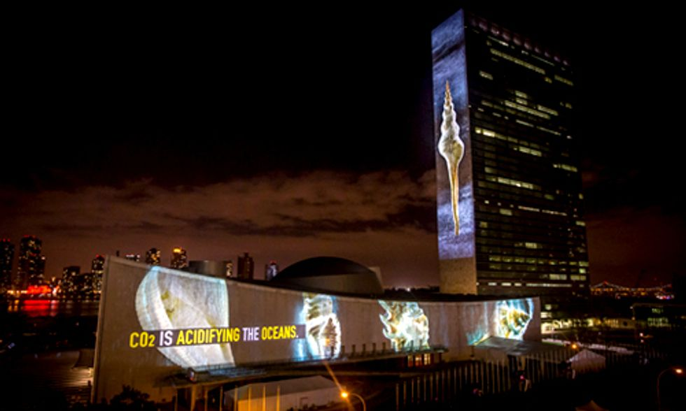 illUmiNations: Exposing the Cause Behind the Extinction of Species