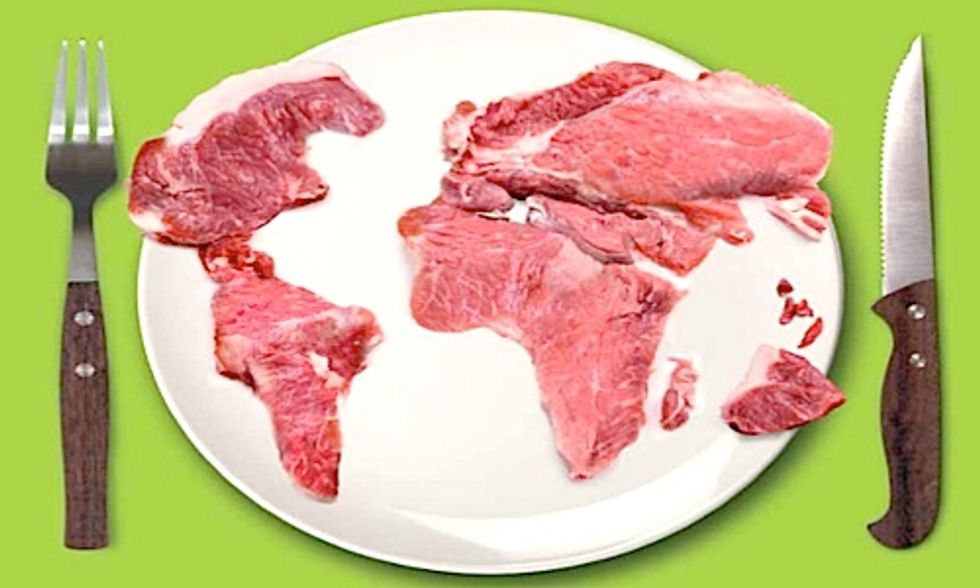 The Meat Atlas: Facts and Figures About Industrial Food Production