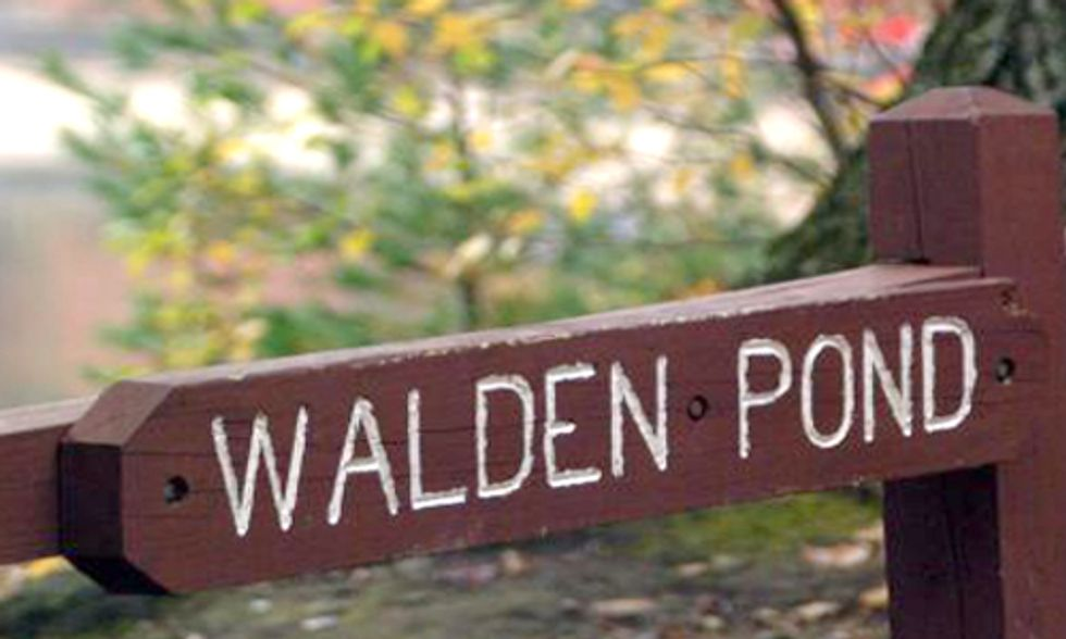 How Climate Change is Impacting Thoreau's Walden Pond