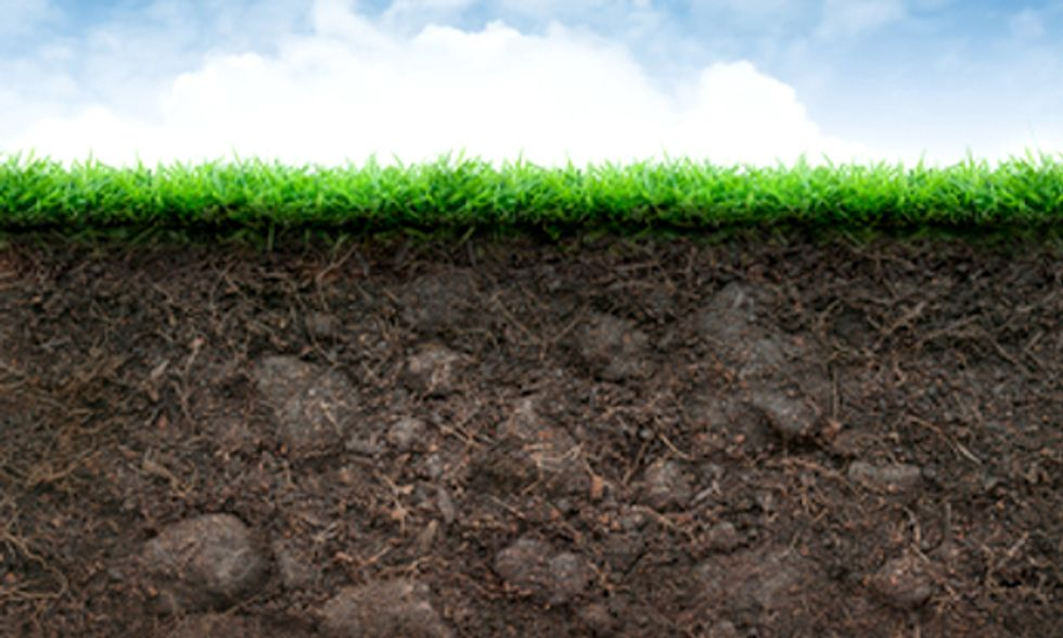Soil Microbes Alter DNA in Response to Climate Change