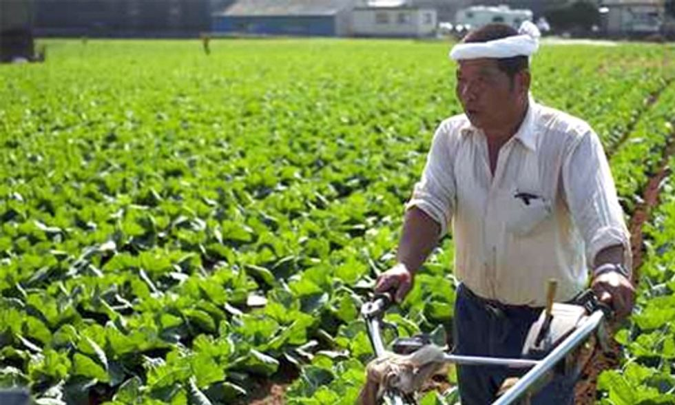 Japanese Cooperatives Help Identify Radiation in Soil and Food Post-Fukushima